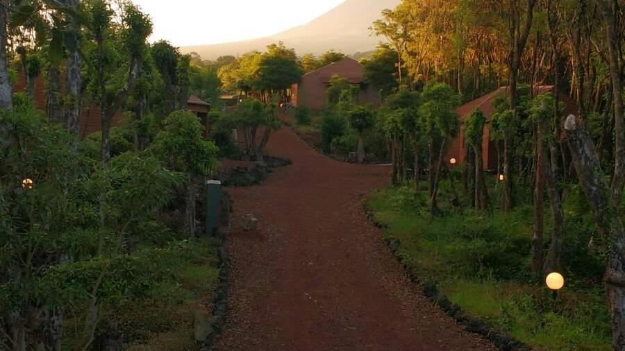 Alma do Pico - Accommodaties Azoren