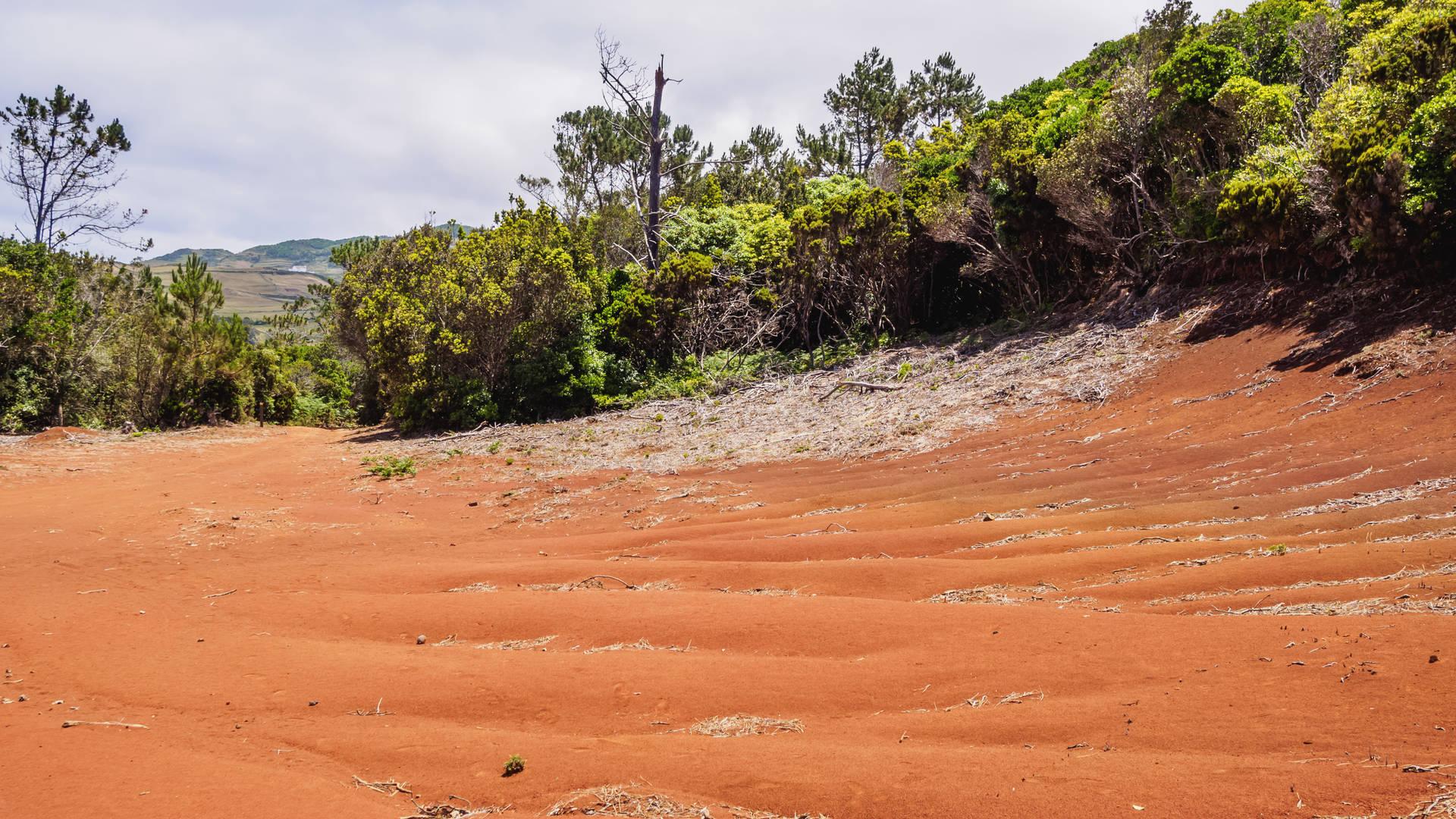 Gouden stranden van Barreiro da Faneca