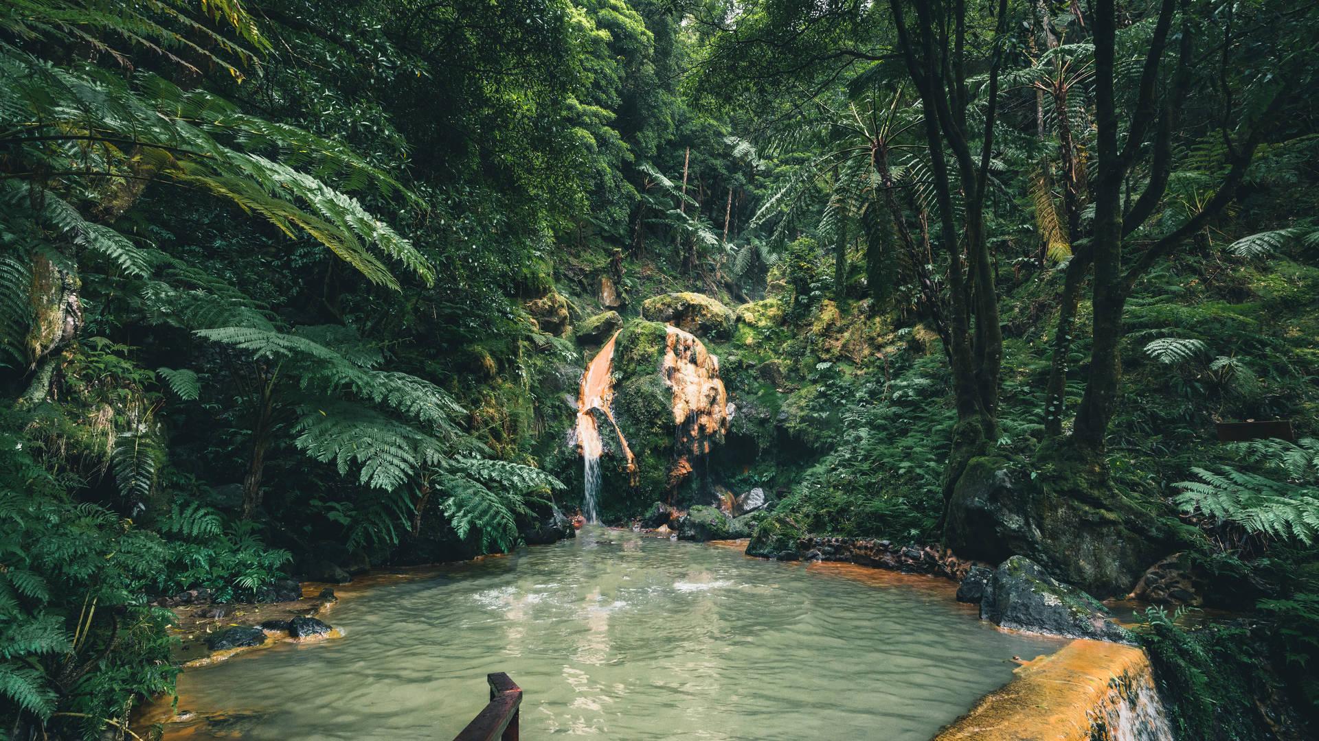 Natuurlijk zwembad Azoren