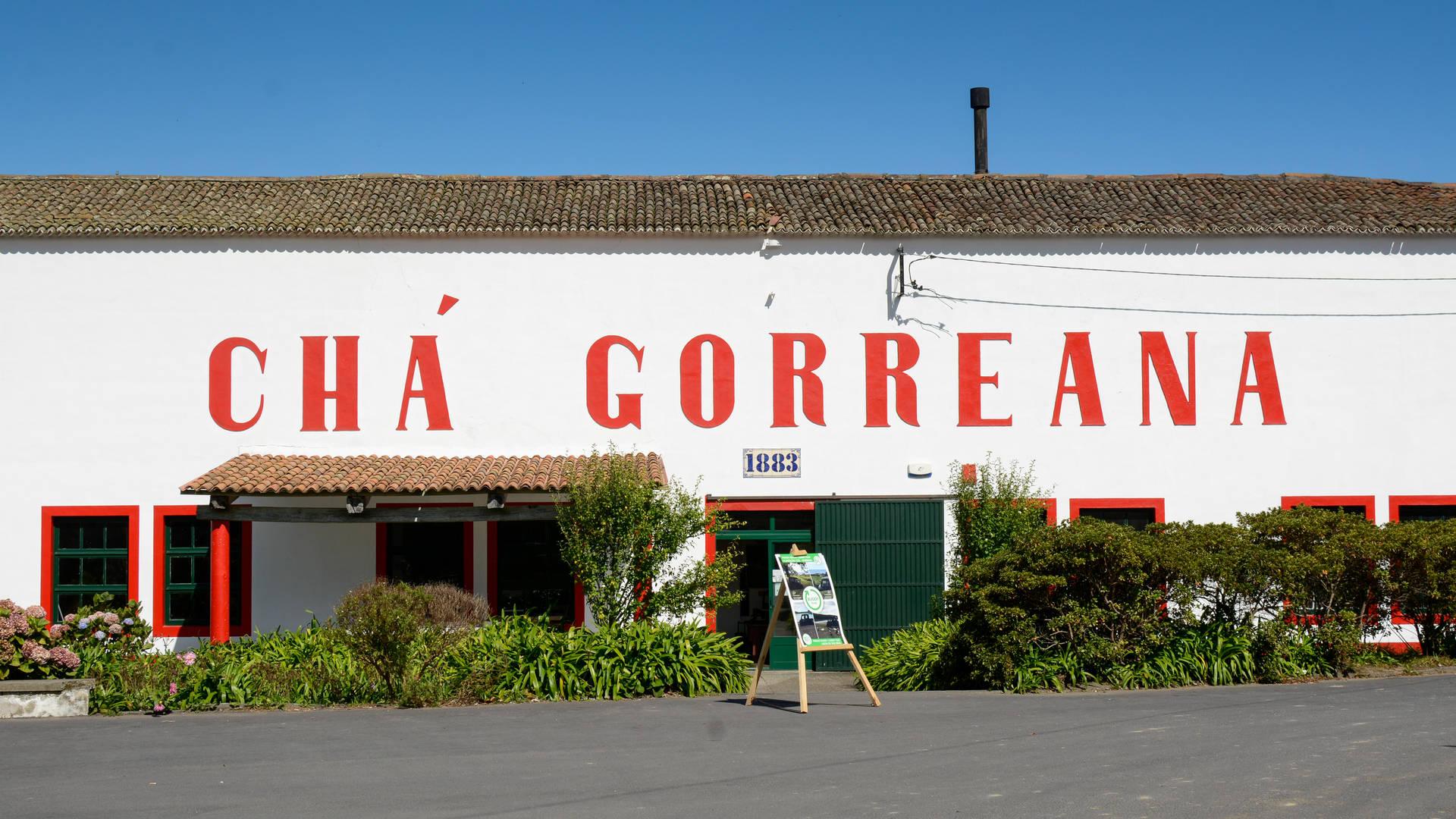 De Cha Gorreana theefabriek