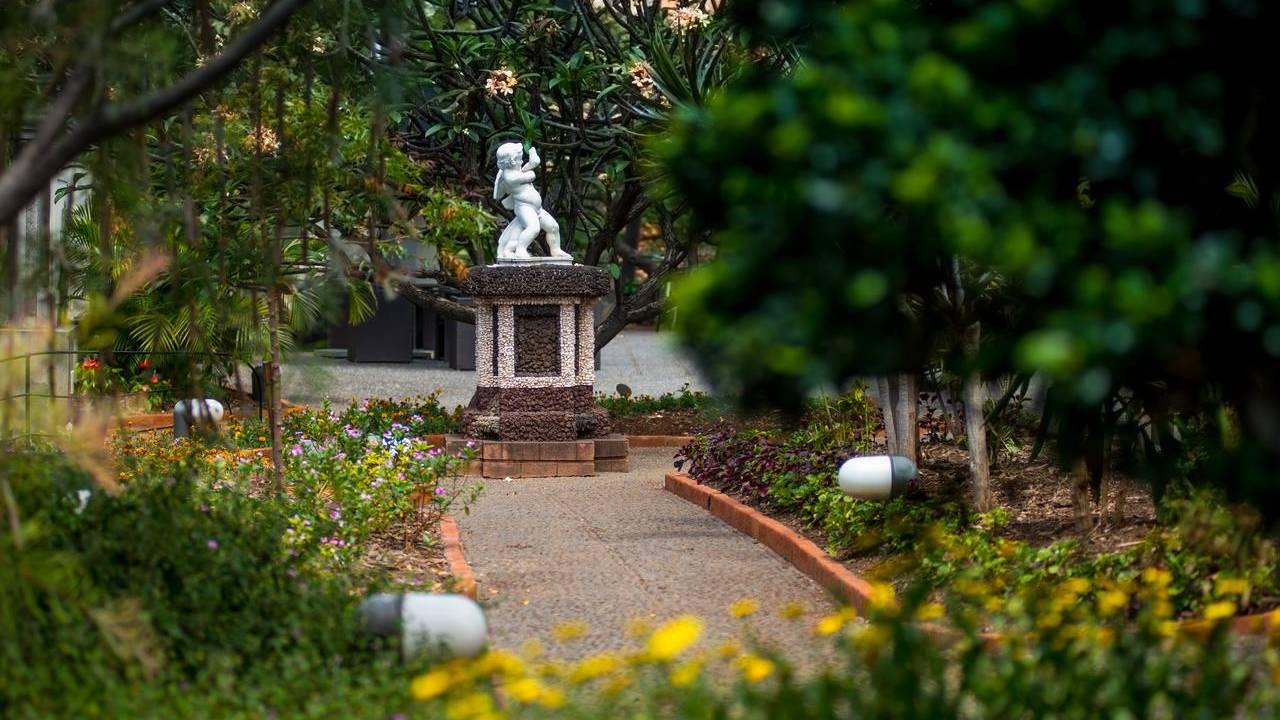madeira botanical garden binnentuin