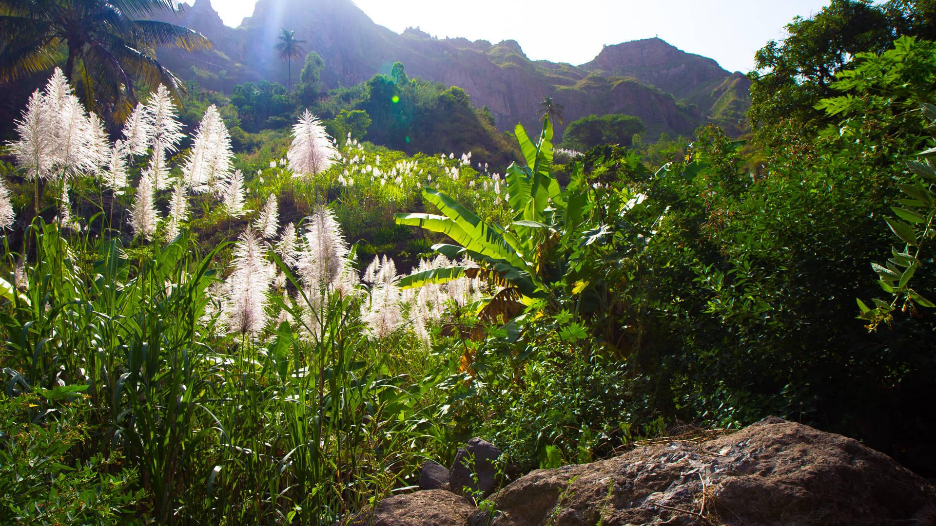 vakantie naar de groene kaap - Vakantie Kaapverdië gastblog Linde-Kee