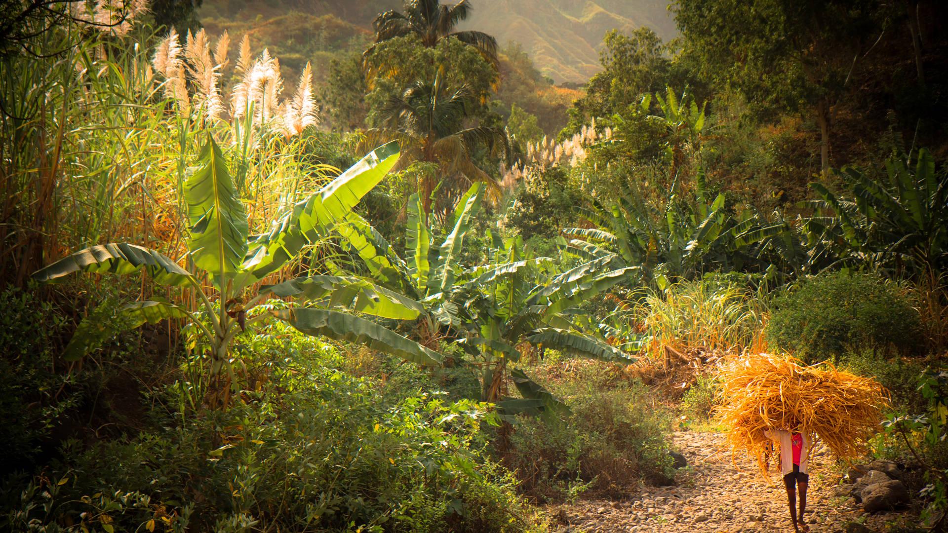 wat te doen in Kaapverdie - wandelen gon gon vallei
