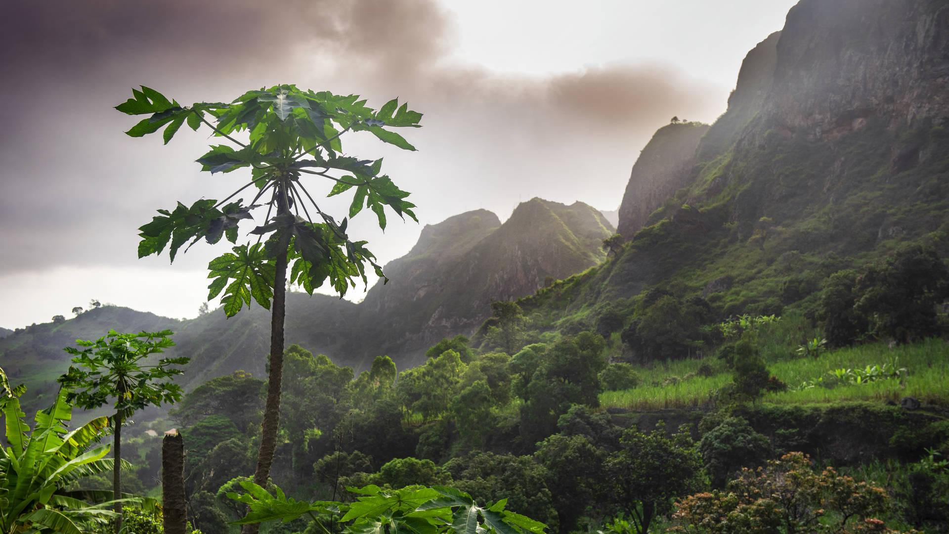 eilandhoppen Kaapverdië