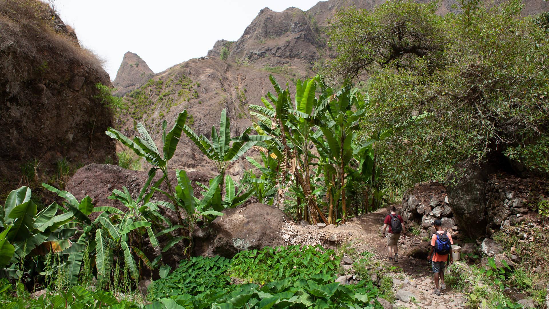 Wandelen in Kaapverdië - Santo Antão binnenland