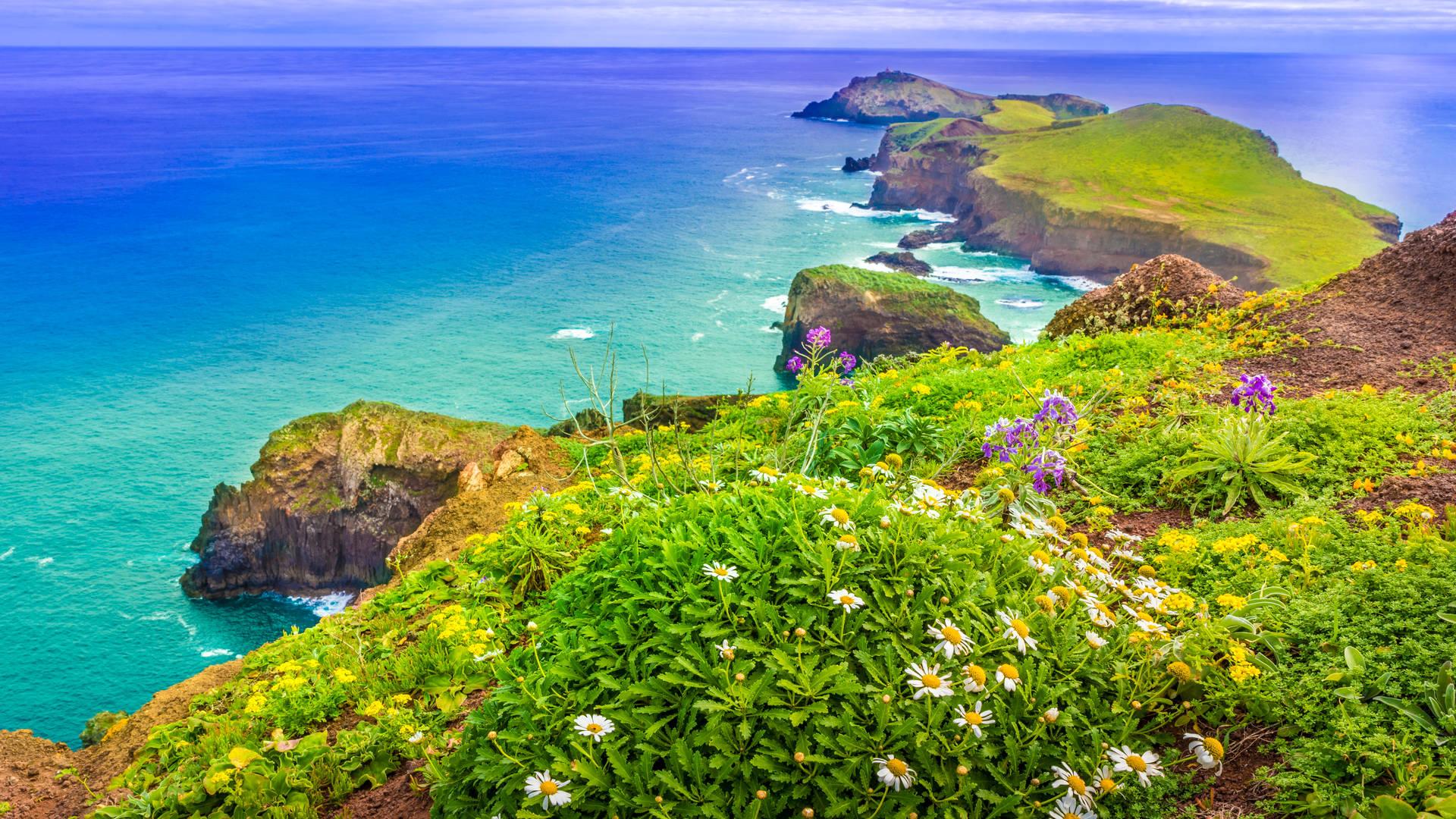 Madeira eiland