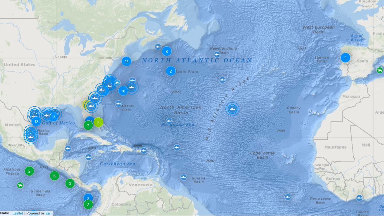 Tracker OCEARCH