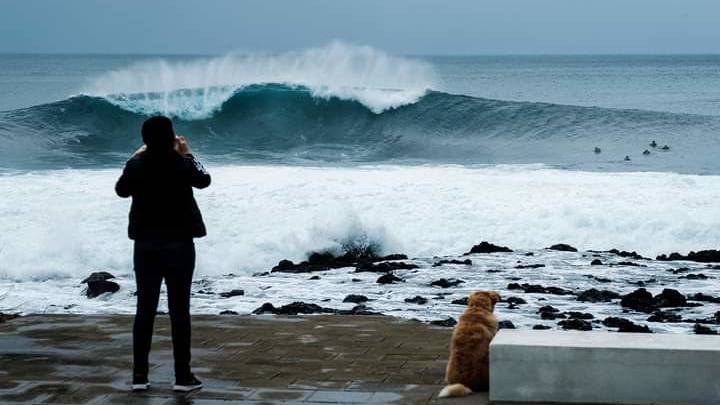 azoren surfen